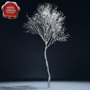 max winter tree v2