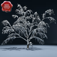 winter tree v4 3d 3ds