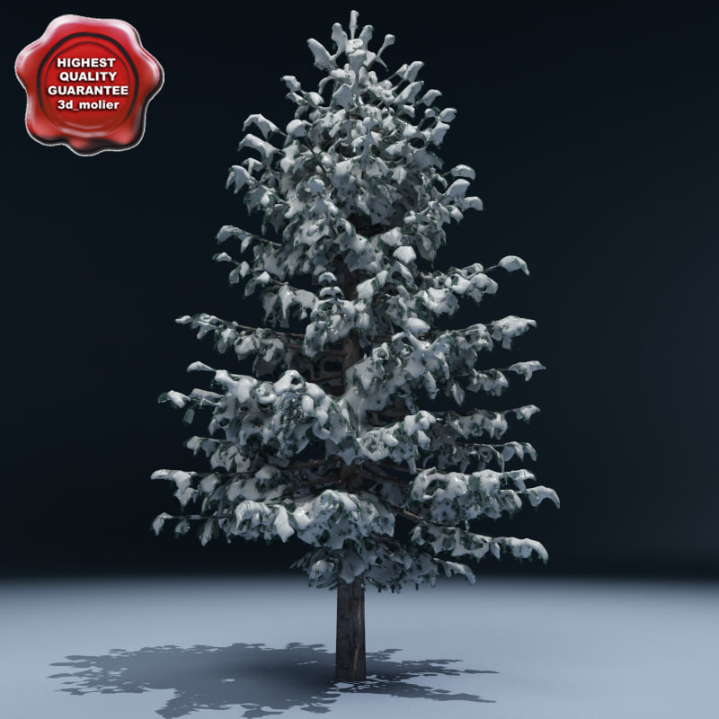 max winter tree v8
