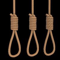 hangmans noose 3d obj