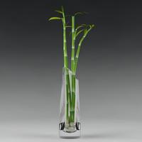 Vase & bamboo