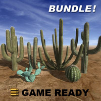 Low Poly - Cactus Bundle