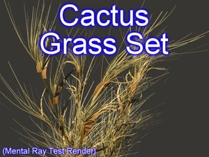 3d model set cactus grasses