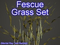 set fescue grasses 3ds
