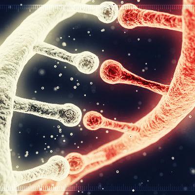 3d x dna helix 1