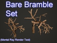 Bare Bramble Set 001