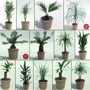 max interior plants v2