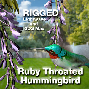 3ds max ruby throated hummingbird lightwave rigged