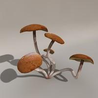 3d model mushroom
