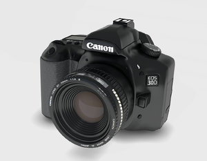3ds canon eos 30d