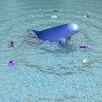 irrawaddy dolphin 3d model