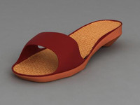 max women slipper
