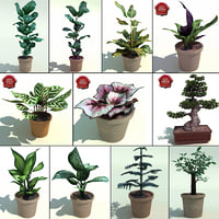 Interior Plants Collection V4