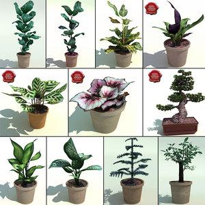 interior plants v4 3d model