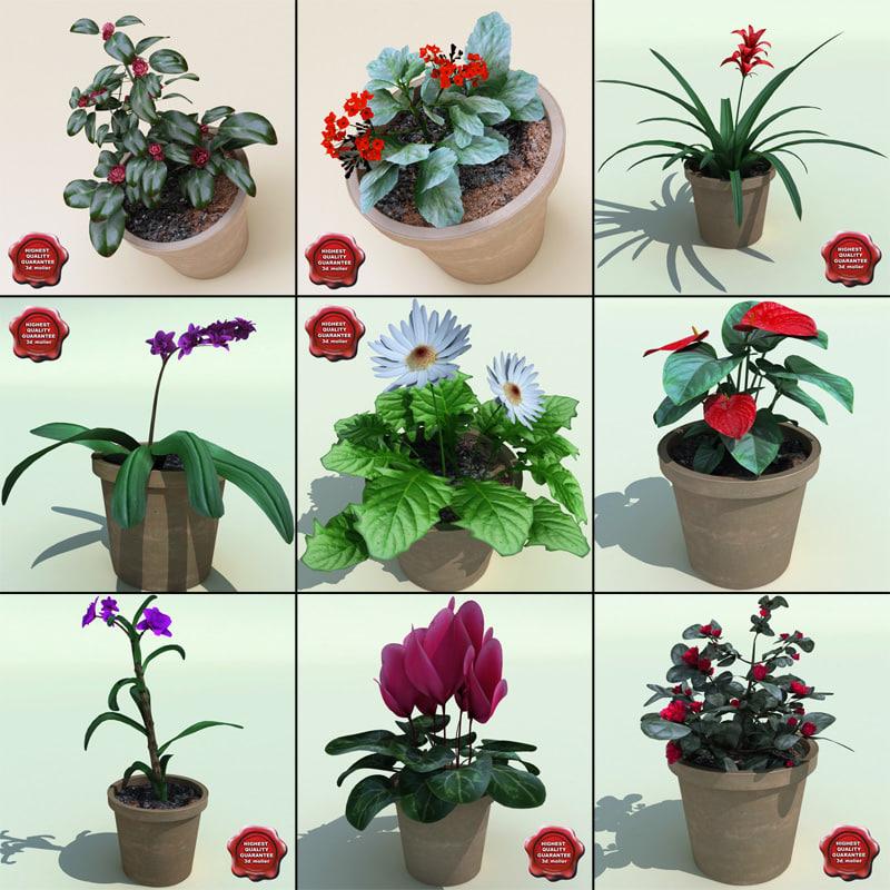 3ds max interior plants v5