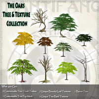 3d country tree foilage model
