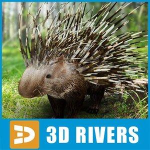 3d porcupine animals rodents