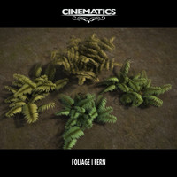 High Poly Fern Collection