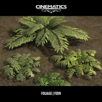 Low Poly Fern Collection