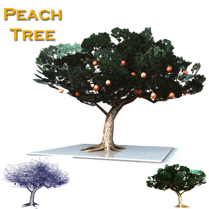 asian cypress peach tree obj