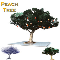asian cypress peach tree obj