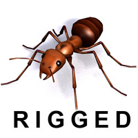3d model rigged ant