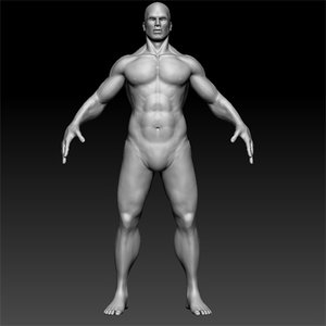 template muscle man 3d model