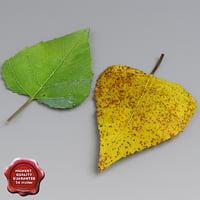 3dsmax birch leaves summer autumn