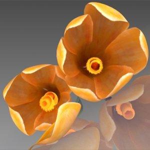 flower crocus yello 3d max