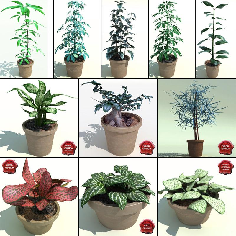 3d model interior plants v1