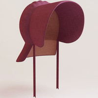 3ds max bonnet