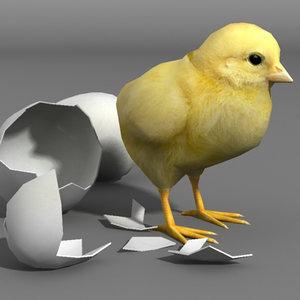 3d chicken eggs