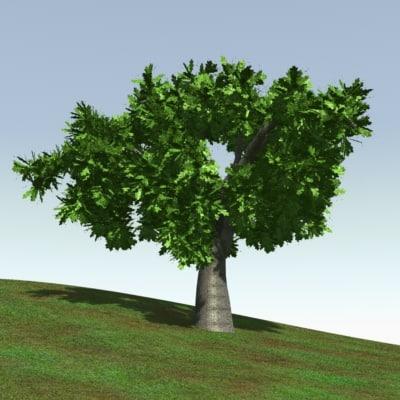 oak tree 3d lwo