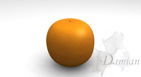 orange fruits 3d model