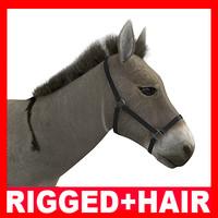 max donkey rigged hair