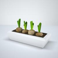 p3d onionplant