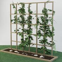 plant_garden_27