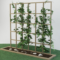 plant garden 3d max