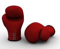 lwo boxing gloves