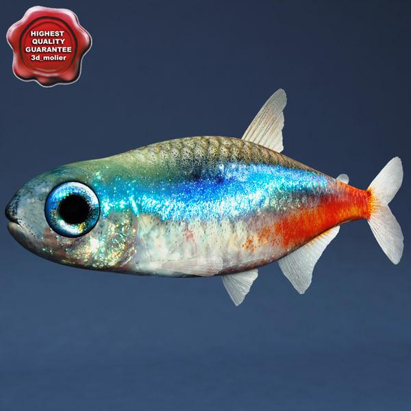 neon red fish 3d model