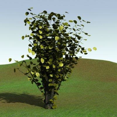 tree bush 3d lwo
