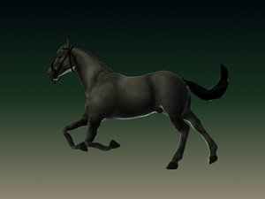 3d horse riged model