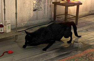 3d cat fur