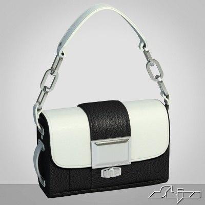 fancy bag 3d obj