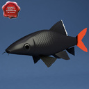 Red-tailed black shark 3D models