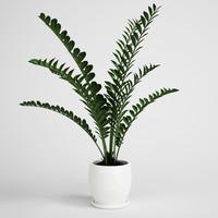 plant 3d c4d