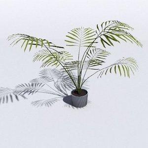 free obj mode areca palm