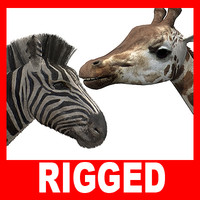 Giraffe and Zebra (Rigged)