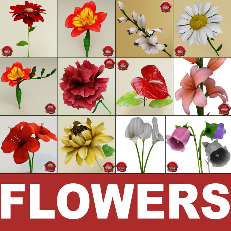 3ds max flowers v1