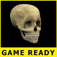 skull - 3d model
